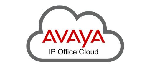 Avaya IP Office in the Cloud
