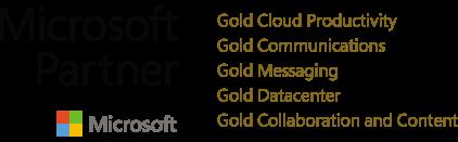 Microsoft Gold Partner Logo.